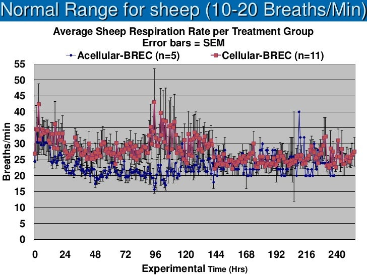 Normal Range for sheep (10-20 Breaths/Min)                       Average Sheep Respiration Rate per Treatment Group       ...