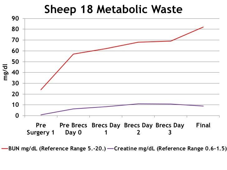 Sheep 18 Metabolic Waste        90        80        70        60        50mg/dl        40        30        20        10   ...