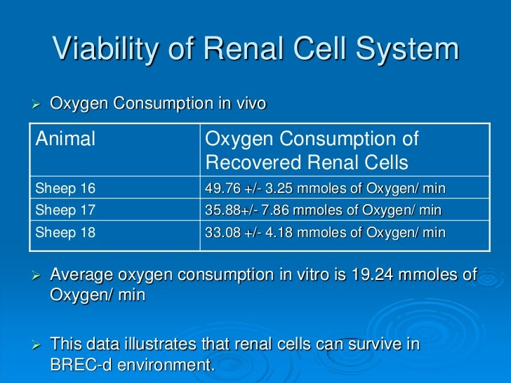 Viability of Renal Cell System   Oxygen Consumption in vivoAnimal                    Oxygen Consumption of               ...