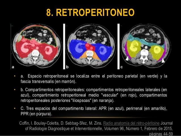 Peritoneo anatomia rm
