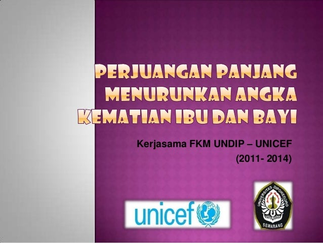 Kerjasama FKM UNDIP – UNICEF                 (2011- 2014)