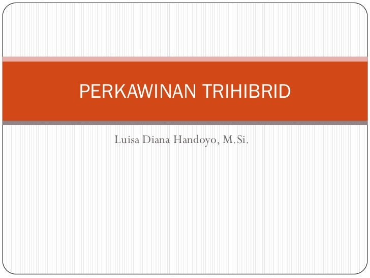 PERKAWINAN TRIHIBRID   Luisa Diana Handoyo, M.Si.
