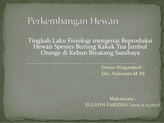 Dosen Pengampuh : Drs. Anjisman,M.Pd Mahasiswa : ELLAYIN FARIDHA (2011.11.13.027) Tingkah Laku Fisiologi mengenai Reproduk...