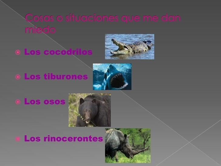 Cosas o situaciones que me danmiedo<br />Los cocodrilos<br />Los tiburones <br />Los osos<br />Los rinocerontes<br />