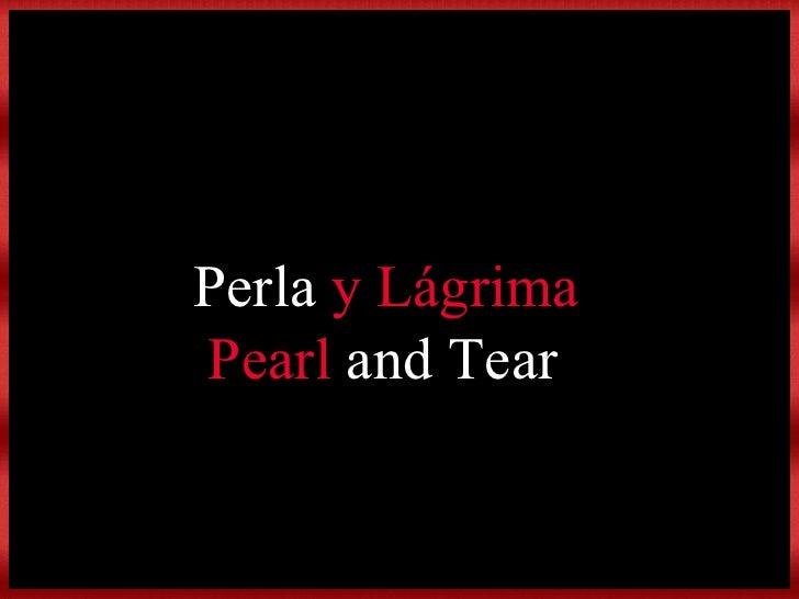Perla  y Lágrima Pearl  and Tear