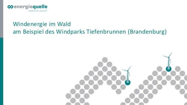 Windenergie im Wald am Beispiel des Windparks Tiefenbrunnen (Brandenburg)