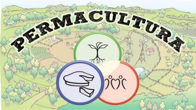 """¿QUÉ ES LA PERMACULTURA? CULTURA PERMANENTE PERMACULTURA AGRICULTURA PERMANENTE """"Sistema de diseño basado en los principio..."""