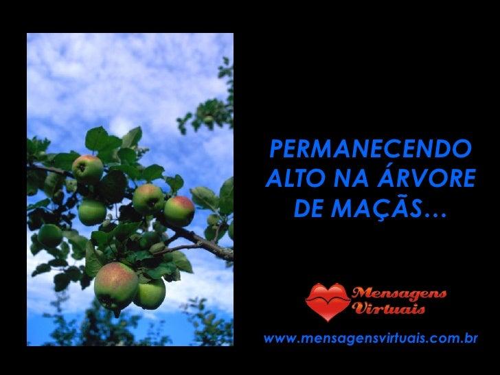 PERMANECENDO ALTO NA ÁRVORE DE MAÇÃS… www.mensagensvirtuais.com.br