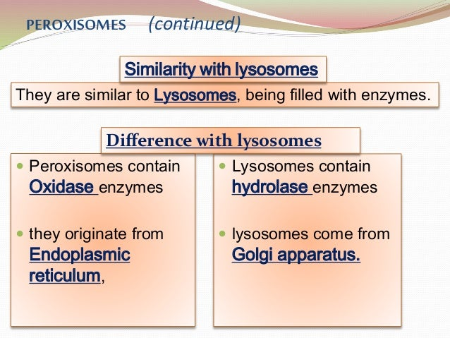 introduction to peroxisomes Cell biology a cell is chemical system that is able to maintain its structure and reproduce cells are the fundamental unit of life all  peroxisomes - used for removing reactive compounds from the cytoplasm - create h2o2 as a byproduct and degrade it with the enzyme catalase 22.
