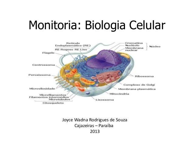 Monitoria: Biologia Celular      Joyce Wadna Rodrigues de Souza            Cajazeiras – Paraíba                    2013