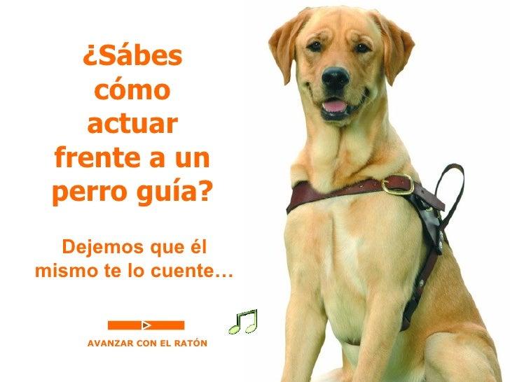 ¿Sábes    cómo    actuar frente a un perro guía?  Dejemos que élmismo te lo cuente…     AVANZAR CON EL RATÓN