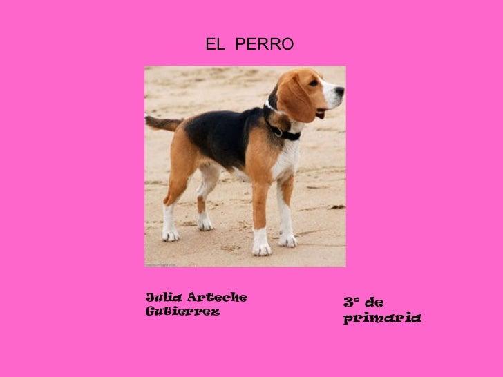 EL  PERRO Julia Arteche Gutierrez 3º de primaria