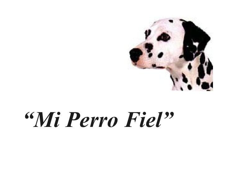 """"""" Mi Perro Fiel"""""""