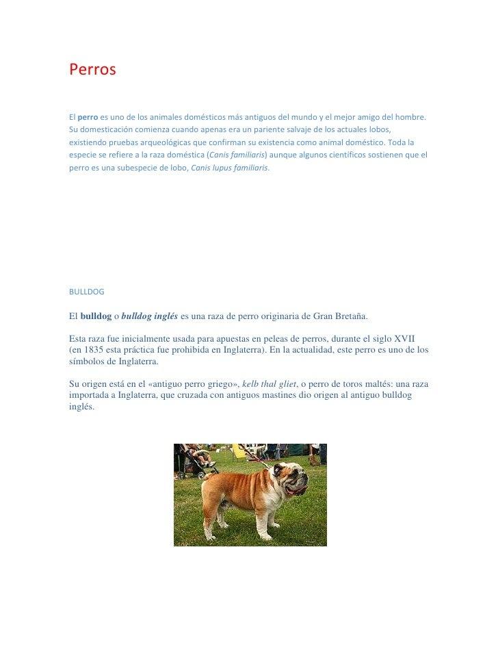 Perros<br />El perro es uno de los animales domésticos más antiguos del mundo y el mejor amigo del hombre. Su domesticació...