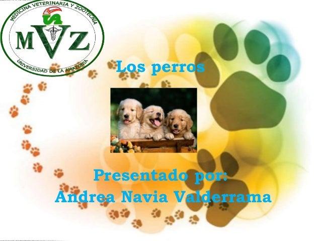 Los perros Presentado por: Andrea Navia Valderrama