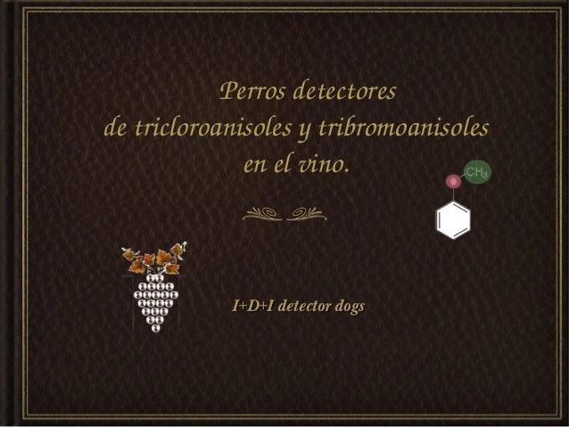 Perrosdetectoresdetricloroanisolesytribromoanisoles              enelvino.            I+D+I detector dogs