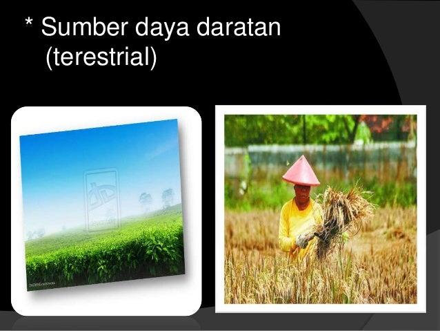 Persebaran dan pemanfaatan sumber daya alam