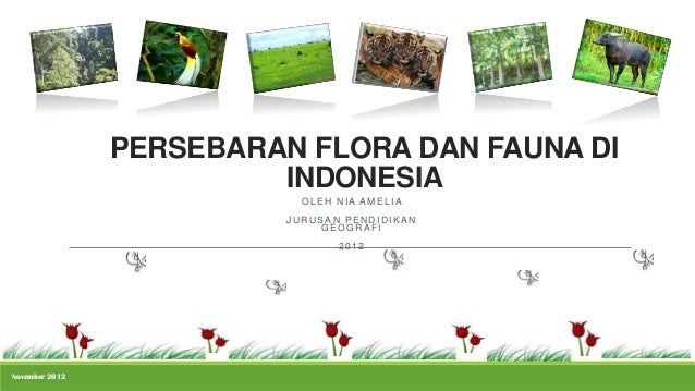 PERSEBARAN FLORA DAN FAUNA DI                         INDONESIA                            OLEH NIA AMELIA                ...