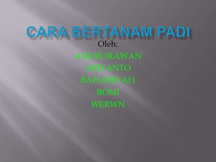CARA BERTANAM PADI<br />Oleh:<br />ANDRI IRAWAN<br />ARIYANTO<br />BAHARSYAH<br />ROMI<br />WERWN<br />