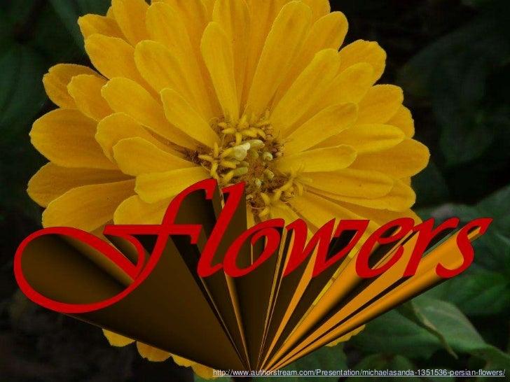 http://www.authorstream.com/Presentation/michaelasanda-1351536-persian-flowers/