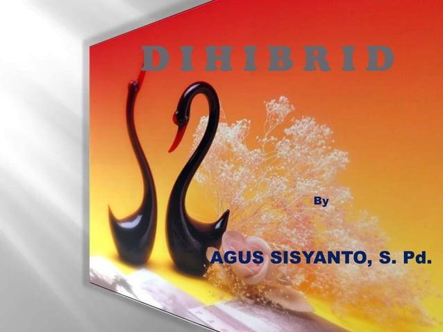 DIHIBRID  By  AGUS SISYANTO, S. Pd.