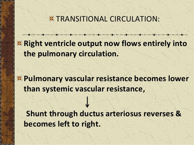 persistent pulmonary hypertension of the newborn pdf