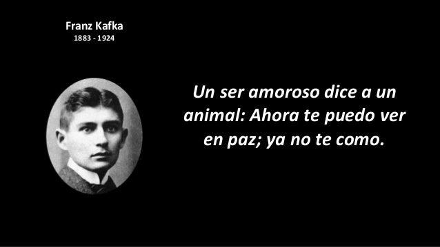 Frases De Amor De Kafka Muharram K