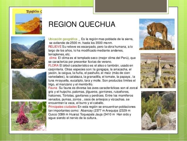 las 8 regiones naturales del per