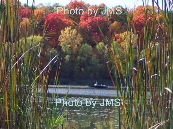 Photo by JMS  Photo by JMS