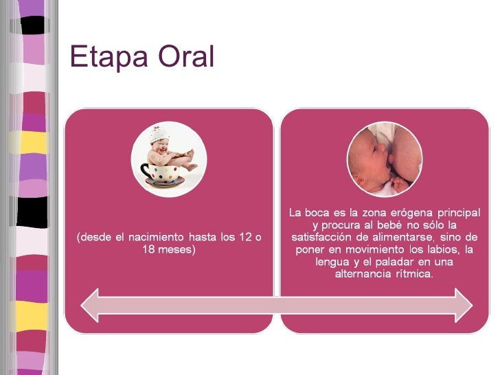 Etapa Oral