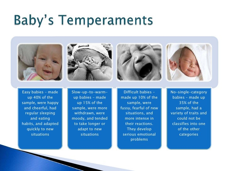 infant temperments Start studying infant development- temperament learn vocabulary, terms, and more with flashcards, games, and other study tools.