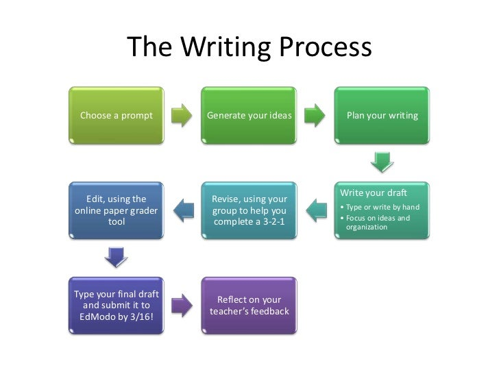 process of writing a term paper
