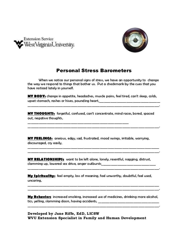 Personal Stress Barometers      When we notice our personal signs of stress, we have an opportunity to changethe way we re...
