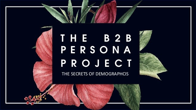T H E B 2 B P E R S O N A P R O J E C T THE	SECRETS	OF	DEMOGRAPHCIS