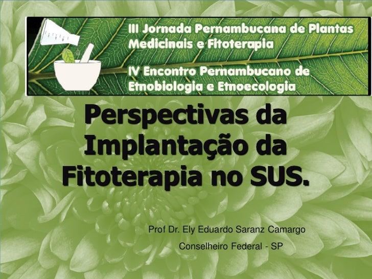 Perspectivas da  Implantação daFitoterapia no SUS.      Prof Dr. Ely Eduardo Saranz Camargo            Conselheiro Federal...