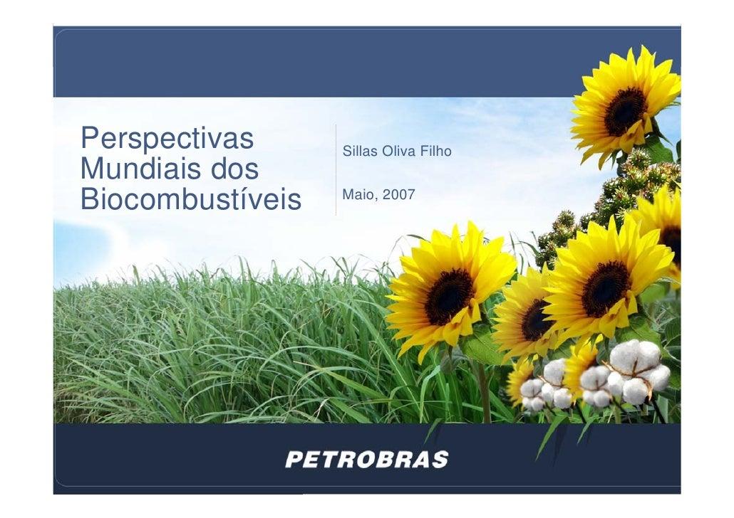 Perspectivas mundiais dos biocombustíveis petrobras