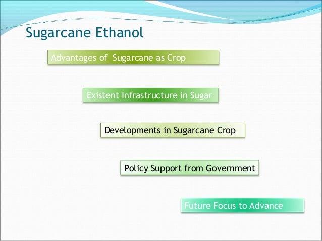 Sugarcane Ethanol Advantages of Sugarcane as Crop Existent Infrastructure in Sugar Developments in Sugarcane Crop Policy S...