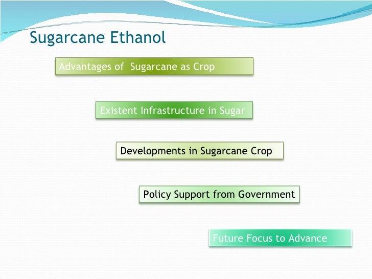 Sugarcane Ethanol Advantages of  Sugarcane as Crop Existent Infrastructure in Sugar  Developments in Sugarcane Crop  Polic...