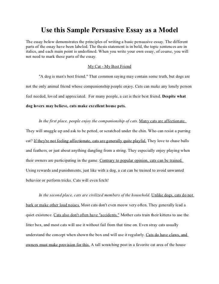 persuasive essay on pets