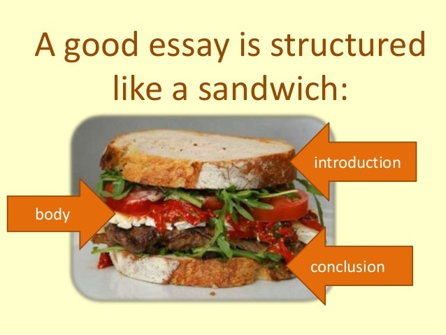 how should an argument essay be structured Tips of writing the best euthanasia argumentative essay and guidelines of out anything important to your essay the structure of the outline will determine.