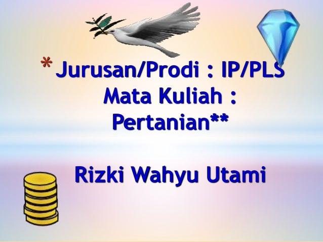 *Jurusan/Prodi : IP/PLS Mata Kuliah : Pertanian** Rizki Wahyu Utami