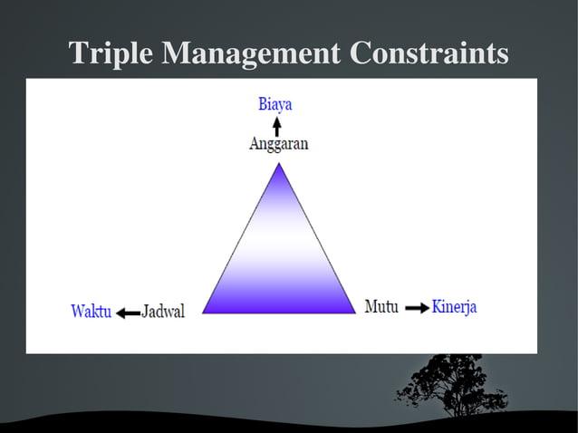 TripleManagementConstraints