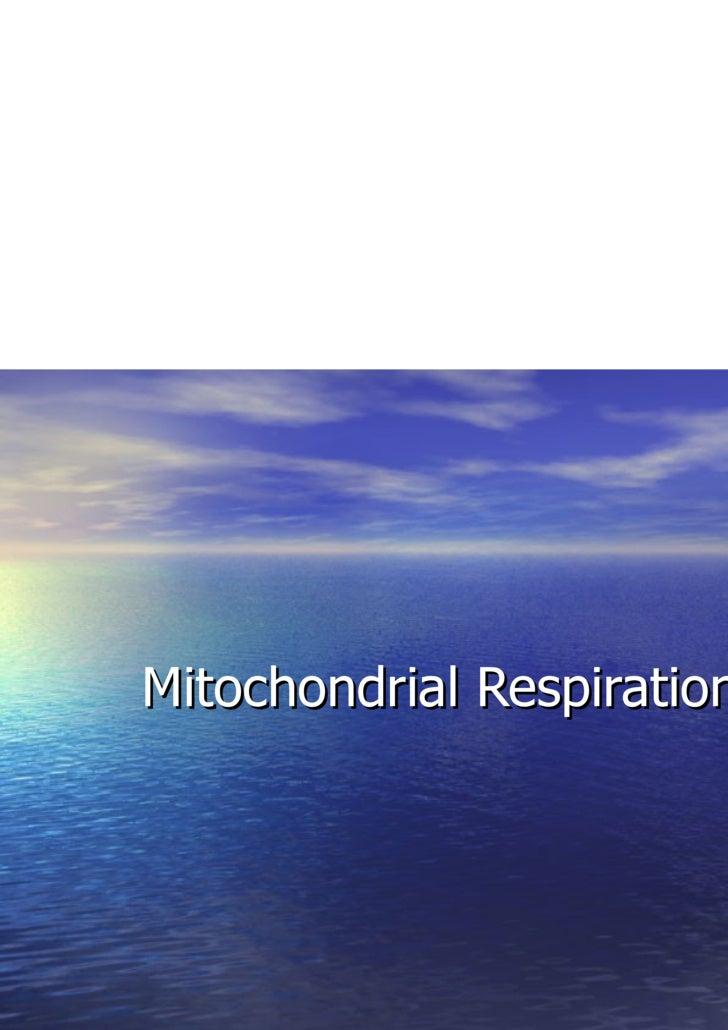 Mitochondrial Respiration