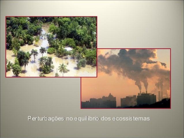 PerturbaçPerturbações no equilíbrio dos ecossistemasões no equilíbrio dos ecossistemas