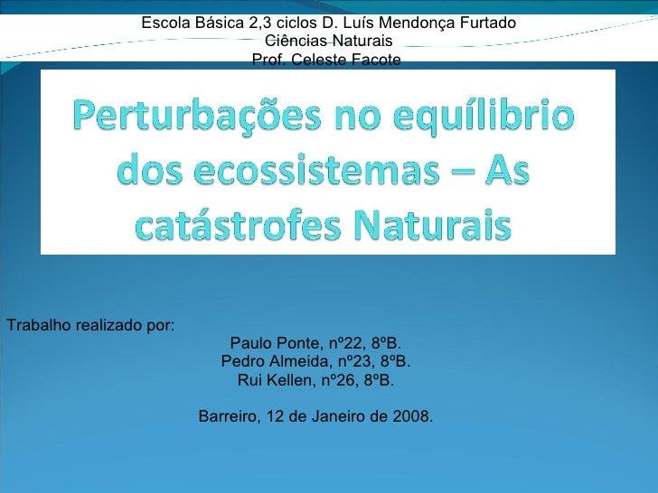 Escola Básica 2,3 ciclos D. Luís Mendonça Furtado Ciências Naturais Prof. Celeste Facote  Trabalho realizado por: Paulo Po...