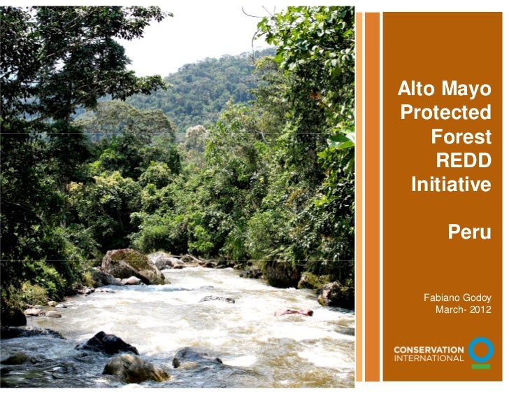 Alto Mayo                                        Protected                                            Forest              ...