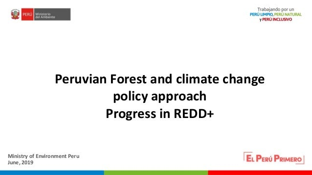 PERÚ LIMPIO PERÚ NATURAL Peruvian Forest and climate change policy approach Progress in REDD+ Ministry of Environment Peru...