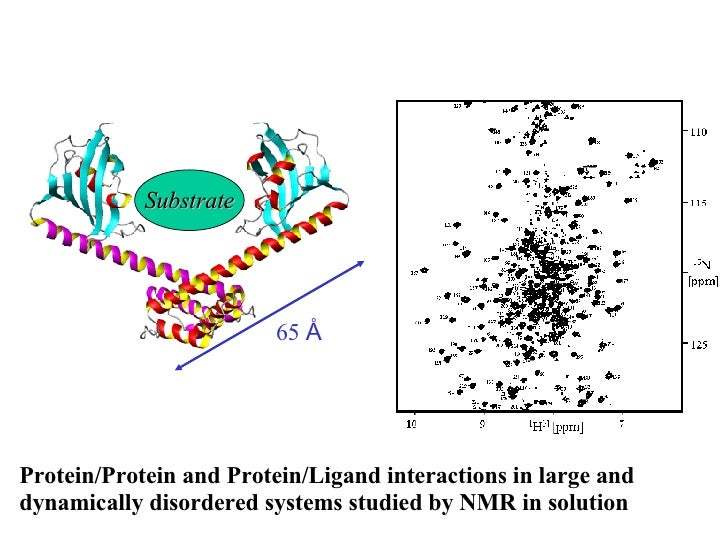 Protein/Protein and Protein/Ligand interactions in large and dynamically disordered systems studied by NMR in solution 65 ...