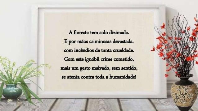 Formatação e Criação: Luzia Gabriele E-mail: luziagabriele@hotmail.com Texto: Alfredo dos Santos Mendes Imagens: Internet ...