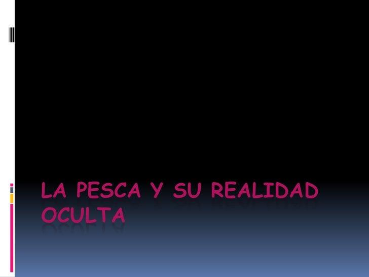 LA PESCA Y SU REALIDAD OCULTA<br />